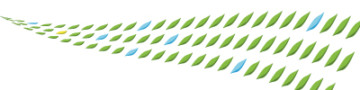ロジデザイン制作実績|ロゴデザイン|おかもと医院